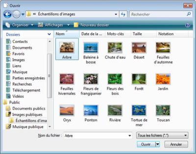 Windows Mail Envoyer Un Email Avec Une Piece Jointe Assistance
