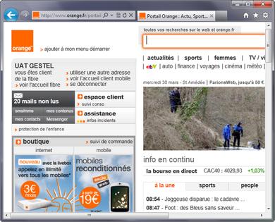 installer portail orange sur le bureau 28 images cl 244 ture grillage brise vue portail et